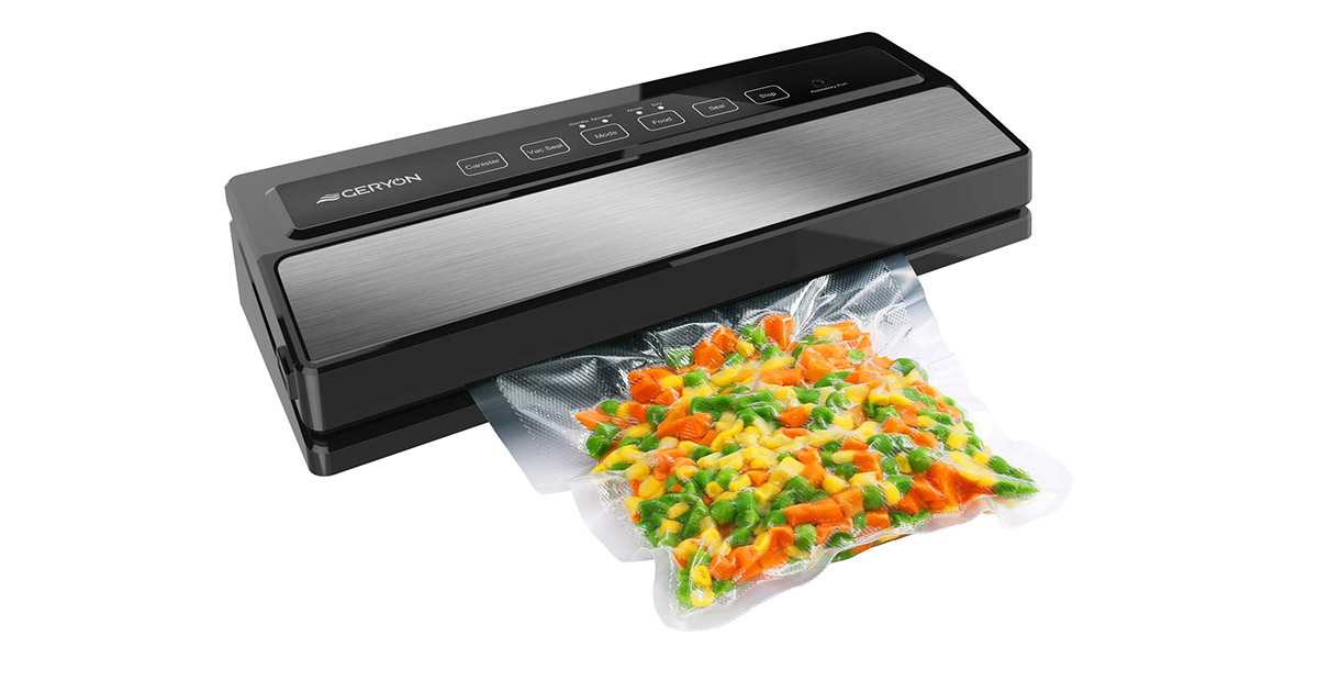 GERYON E2900 MS Compact Design Silver Vacuum Sealer Machine image